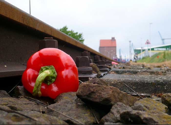 80 Kilogramm Lebensmittel wirft jeder Deutsche im Jahr in den Abfall.