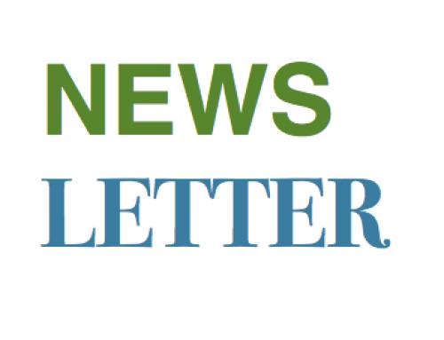FAIReconomics Newsletter KW 36: Streit um Lieferkettengesetz, Grüner Wasserstoff, energetische Gebäudesanierung, SUVs, Nashörner in Afrika