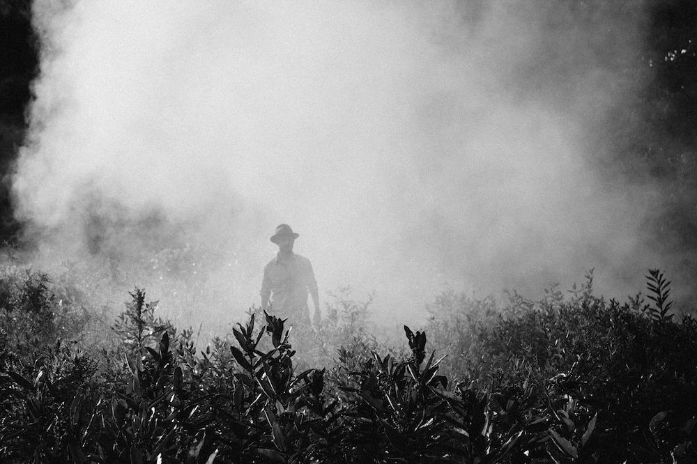 Mann im Nebel