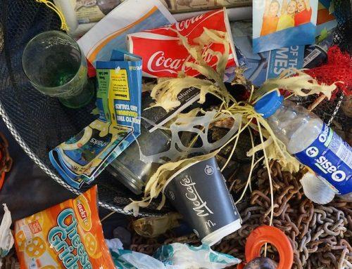 Wegwerfprodukte aus Plastik: Europäisches Parlament stimmt für Verbot ab 2021