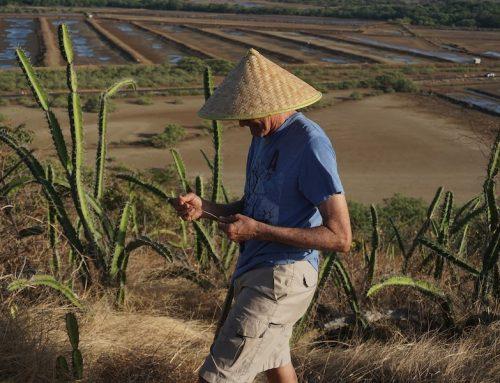 Warum chinesische Landwirte beim Energiesparen ganz vorn sind