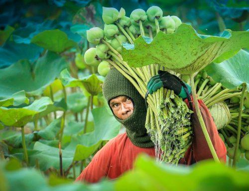 Oxfam: Katastrophales Ergebnis macht Lieferkettengesetz unumgänglich