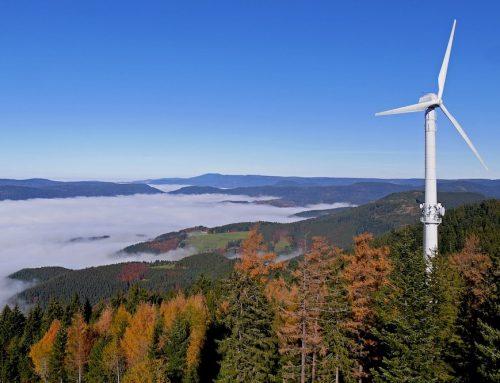 Nettostromerzeugung im 1. Halbjahr 2020: Rekordanteil erneuerbarer Energien von 55,8 Prozent