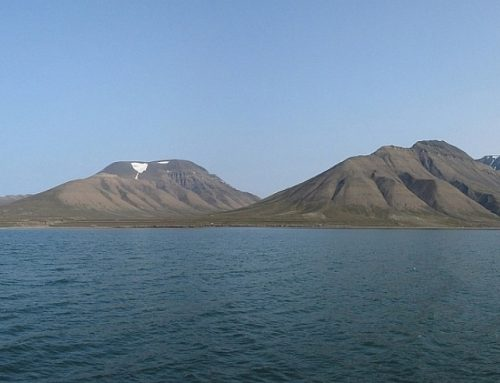 Sprunghafte Veränderungen im arktischen Ökosystem erforschen
