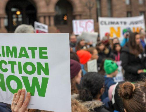 Startups wollen Verantwortung in der Klimakrise übernehmen