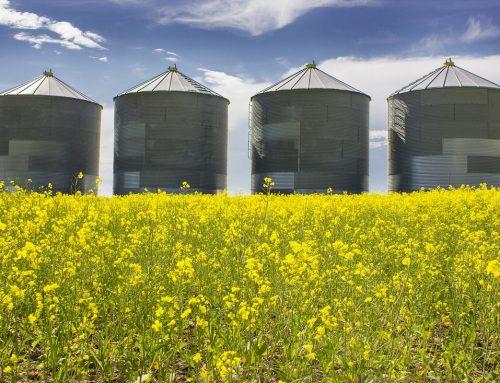Ernährungsindustrie ist zu wenig auf Klimawandel eingestellt