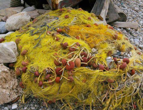 Geisternetze machen ein Drittel des Plastikmülls im Meer aus