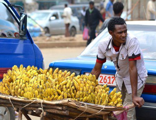 Afrika First! Der Kontinent braucht eine soziale Marktwirtschaft