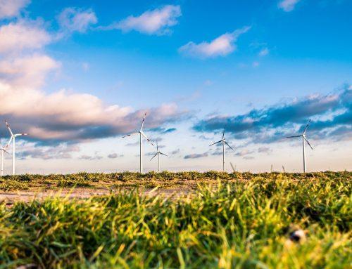 EU-Parlament will Gelder in Nachhaltigkeitsprojekte fließen lassen