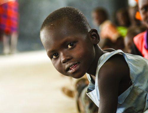 Simbabwe: Gelder für Nahrungsmittelsoforthilfe versiegen, während Millionen von Menschen in Simbabwe vor einer Hungersnot stehen