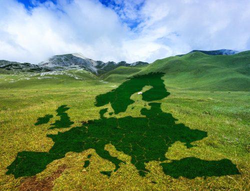 Wie die EU das Null – Emissionsziel bis 2050 kostenneutral erreichen kann