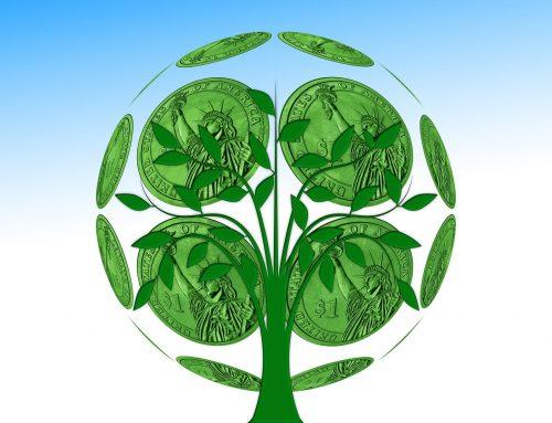Felix Haupt: Das Thema nachhaltige Geldanlage gewinnt für viele Investoren an Bedeutung