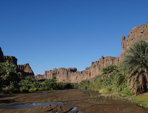 Neue Gärten für die Sahara: Nachhaltiger Landbau im Tschad