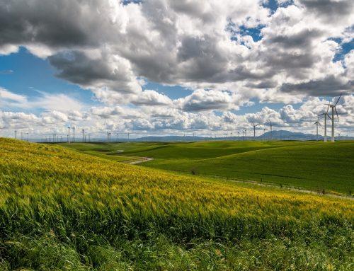Nachhaltigkeitsstrategie generalüberholt: Nachhaltigkeitsrat begrüßt neuen Fokus auf die großen Transformationsthemen