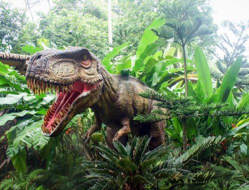 Artensterben: Schlimmer als das Dinosauriersterben – Alarmierende Zerstörung der biologischen Vielfalt