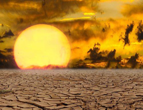 """Buchempfehlung: """"Überhitzt: Die Folgen des Klimawandels für unsere Gesundheit. Was wir tun können"""""""