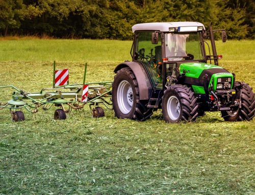 CDU Abgeordnete Connemann und Stegemann: Erntebericht 2021 – Landwirtschaft muss sich auf Klimaänderungen einstellen