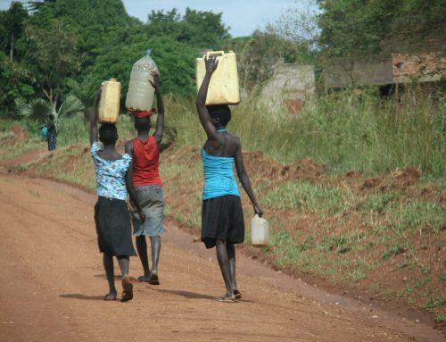 Neue Website zeigt Hygienestandards in afrikanischen Städten